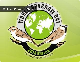 20 марта Международный день воробья - приглашаем на встречу!