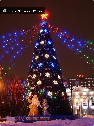Новогодняя елка возле областной библиотеки.