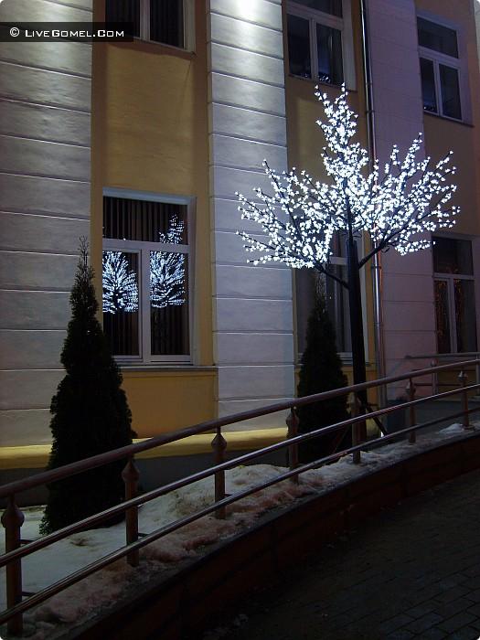 Светодиодное дерево в Новобелицком районе.