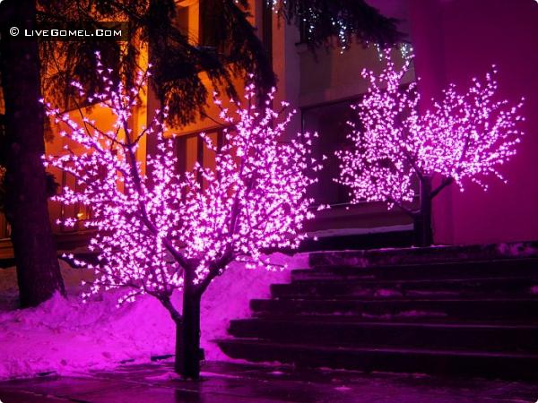 Светодиодные деревья в центре города.
