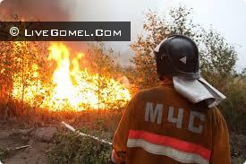 лесные пожара в речицком районе