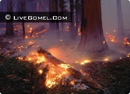 В Речицком районе спасатели-десантники погасили два лесных пожара