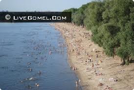 Каково состояние гомельских пляжей?