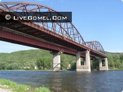 Девочку, которую мать сбросила с моста в реку Сож, опекать будут родственники из России