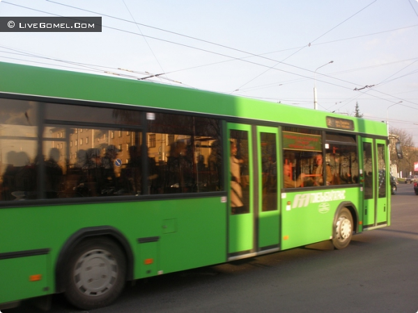 """Профилактическая декада """"Автобус"""" стартовала в Гомеле"""