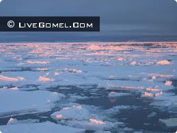 За три дня на льду погибло несколько человек