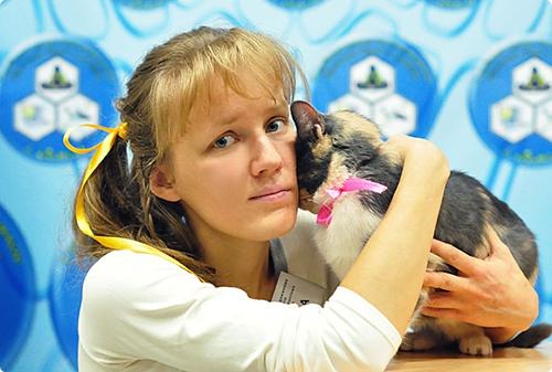 Светлана Лаппо: «Мы предложили местным властям принять собственную программу стерилизации бездомных животных»