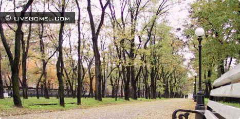 В Советском районе ищут место для закладки аллеи к 70-летию Великой Победы