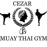 Тайский бокс в Гомеле: школы, где заняться тайским боксом в городе