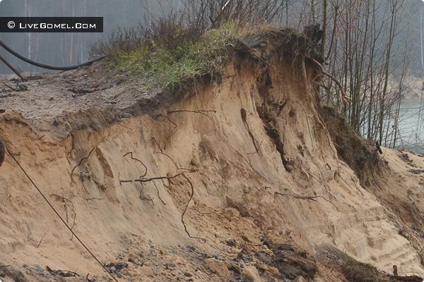 У кладбища «Осовцы» песок воровали тоннами. Защитники природы остановили экологический беспредел