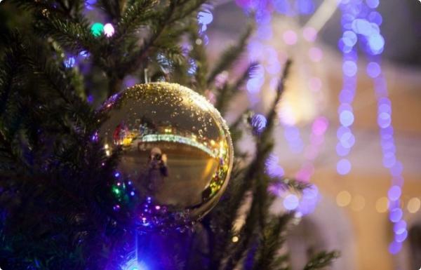 Огни новогодней ёлки в Новобелицком районе зажгут 15 декабря