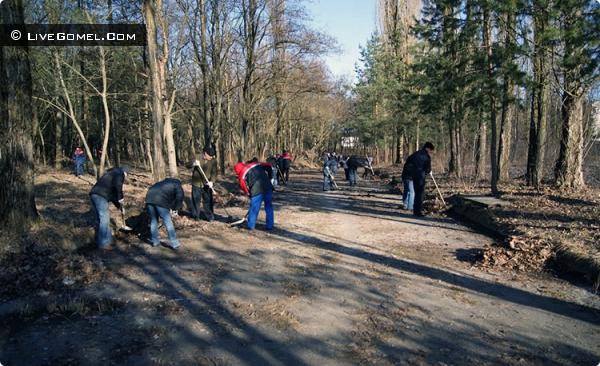 За зиму в лесу вдоль Объездной скопилось десять самосвалов мусора