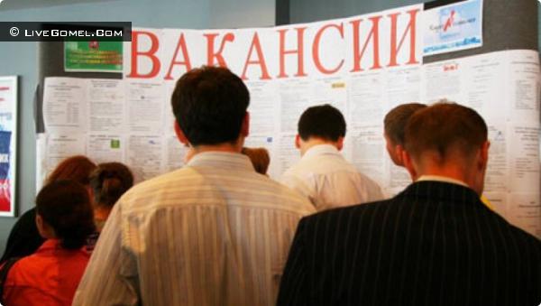 Безработным гомельчанам предложат трудоустройство в Минске и Гомеле