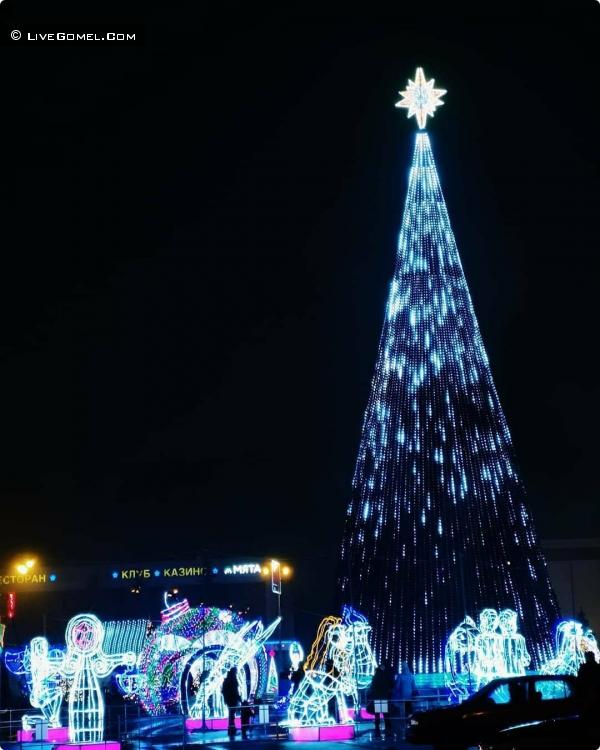Новогодняя елка в Гомеле 2019