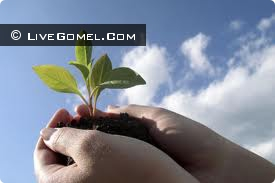 Экологическая акция в Гомеле